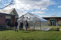Education students partner with Goode Elementary school to build greenhouse.