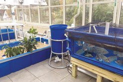 Aquaponics System located in the Naylor Ecological Sciences Center