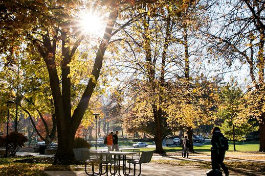 York College main campus in the fall